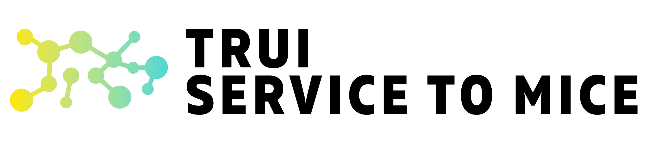 Trui Service to MICE